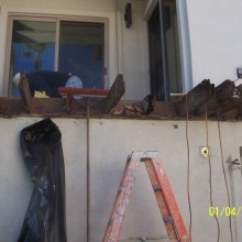 Dry Rot and Termite damage repairs